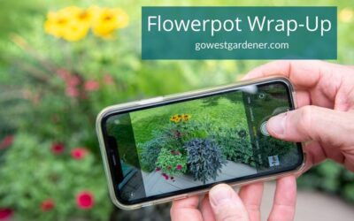 What to Do BEFORE You Empty Your Flowerpots