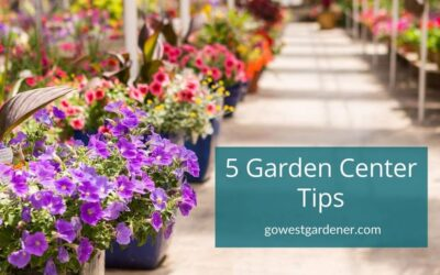 5 Helpful Things to Know About Garden Centers in Colorado, Utah & Similar States