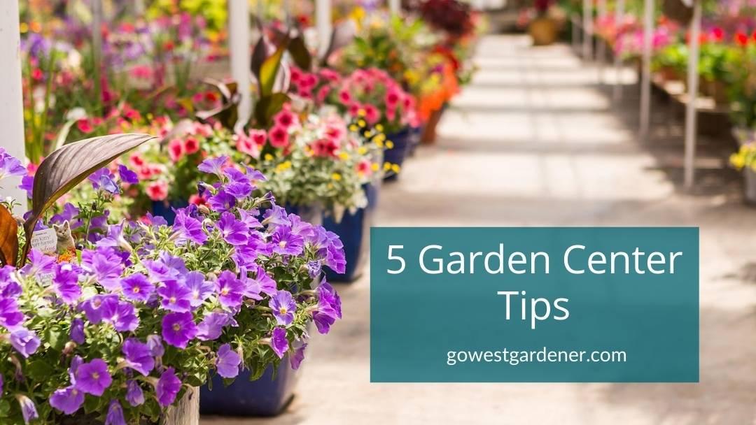 Tips to shop smarter at your local garden center in Colorado