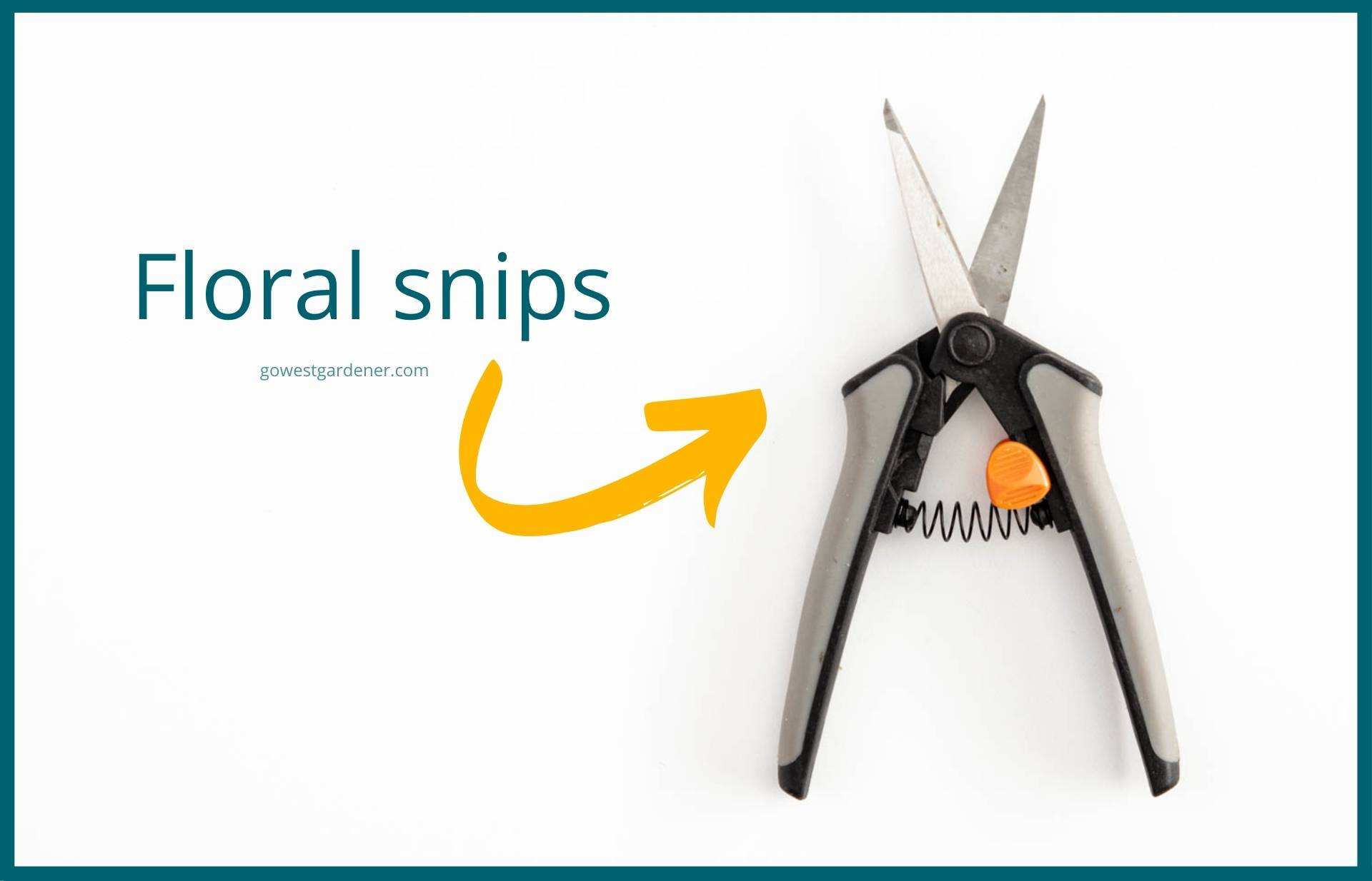 This is what floral snips look like for trimming dead blooms off flowers, known as deadheading