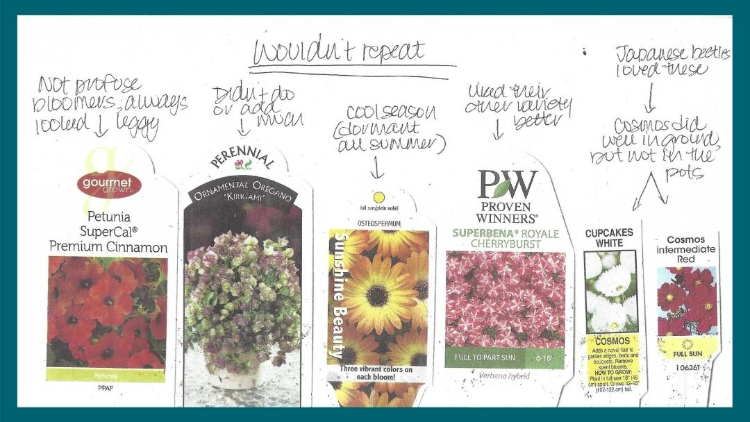 What container garden notes look like for flowers you wouldn't repeat