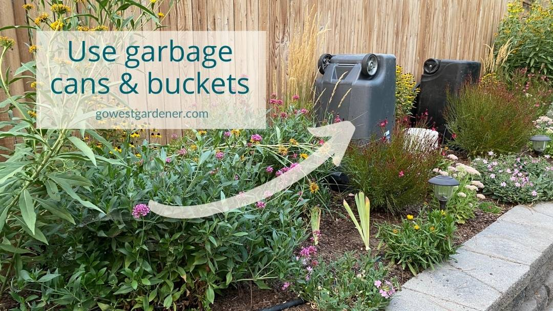 You can use garbage cans and buckets as frost covers