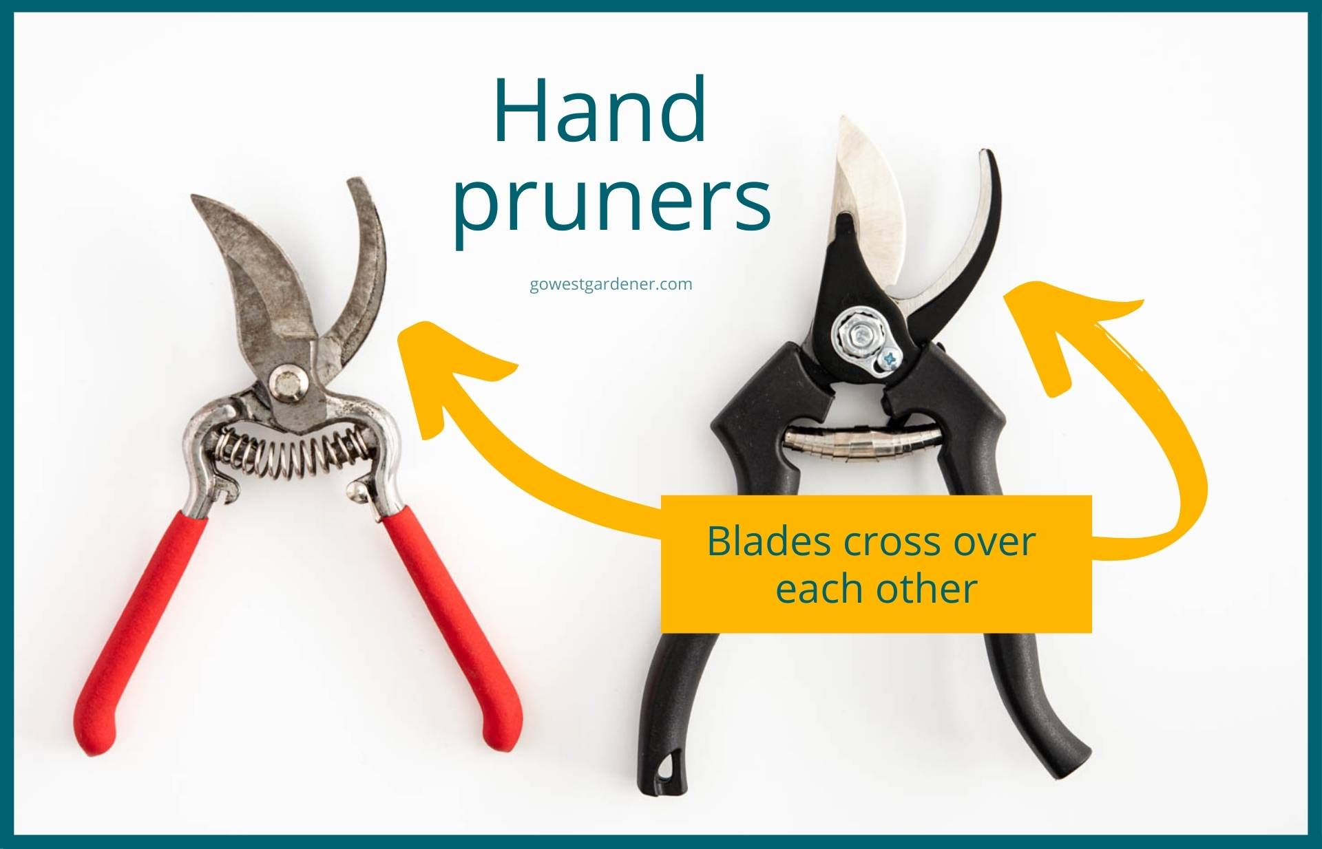 This is what hand pruners look like -- the blades cross over each other, rather than meeting in the middle