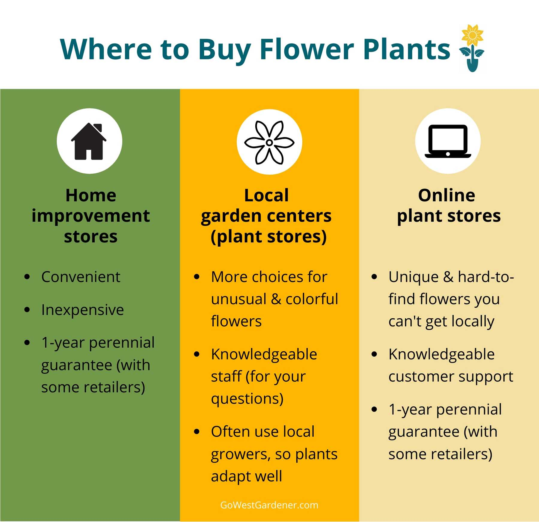 Infographic showing where to buy flower plants in Colorado: Comparing home improvement stores, local garden centers and nurseries, and online plant stores
