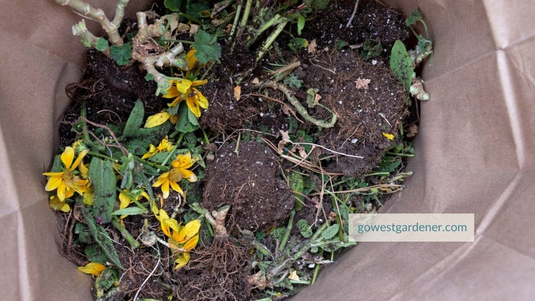 Flowers that are dead are placed in a brown, paper compost bag