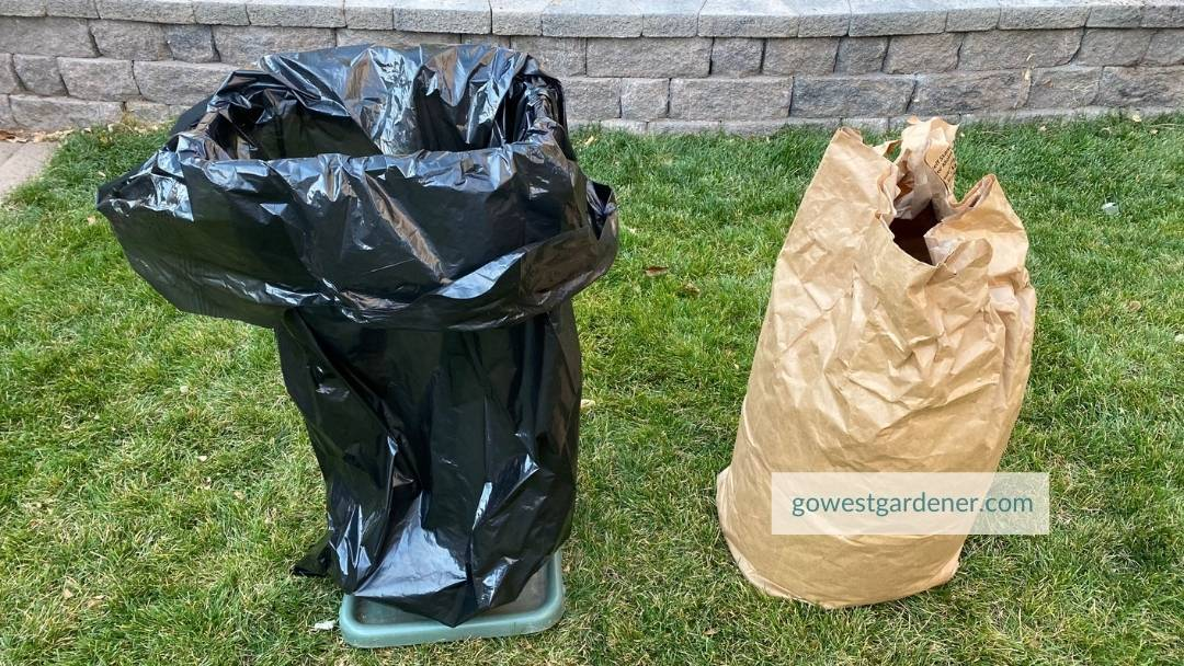 Throw diseased plants in the trash bag and plants for recycling in the brown paper bag