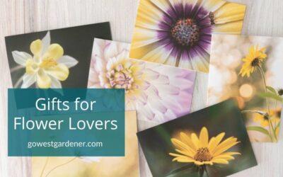 8 Gift Ideas for Flower Lovers, Including Beginner Gardeners