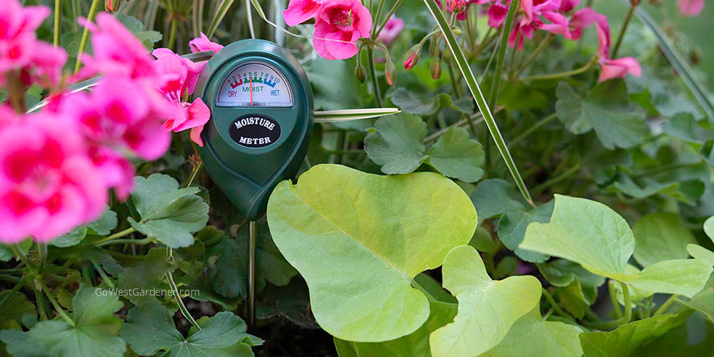 A moisture meter is a creative gift for flower lovers who are beginner gardeners. It will help their flowers live longer!
