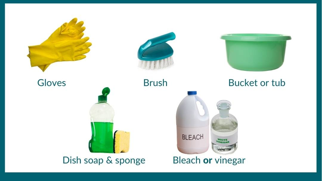 Supplies needed to sterilize flowerpots: gloves, a brush, a bucket, a dish soap and sponge and bleach or vinegar.