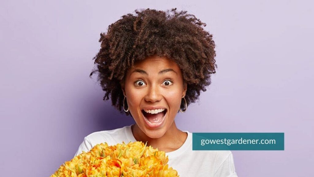 """What type of flowerpot gardener are you?"""