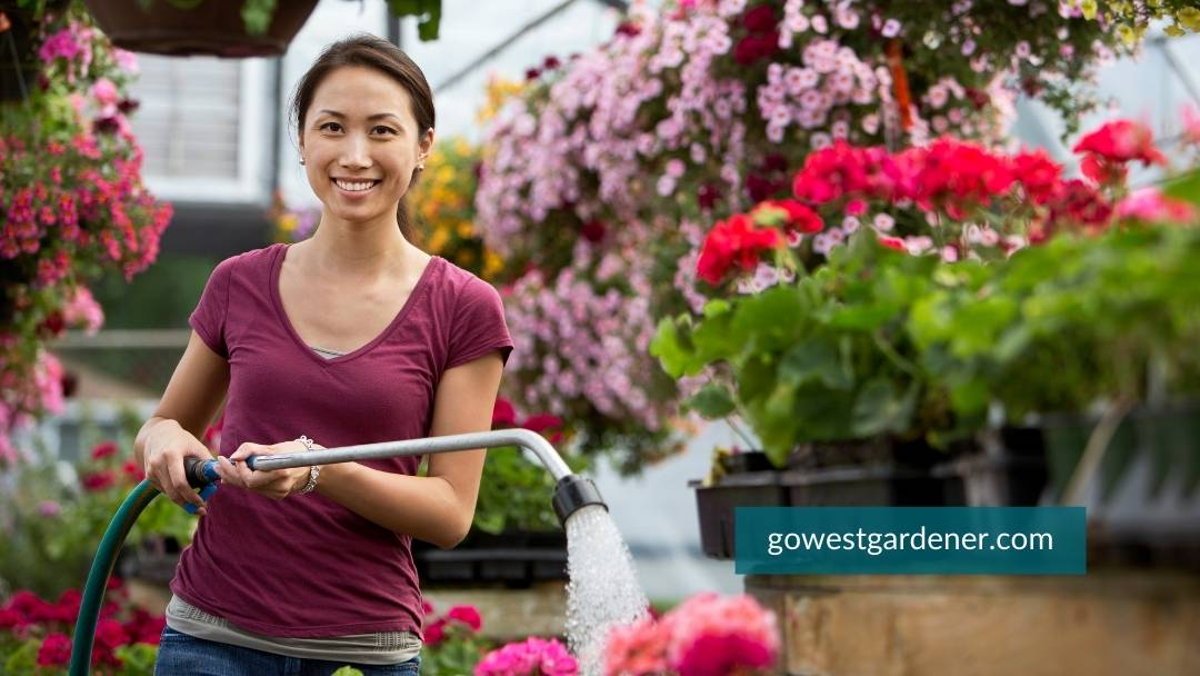 Local, independent garden centers have employees who can help you find the flower plants you want.