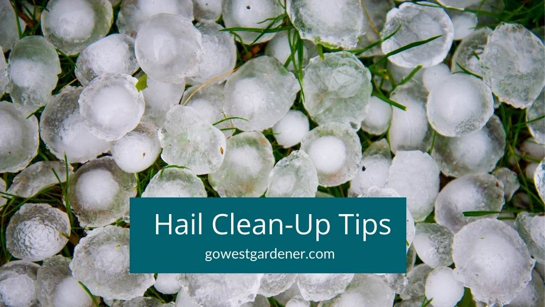 Tips on how to clean up after a hailstorm in states like Colorado, Texas and Wyoming