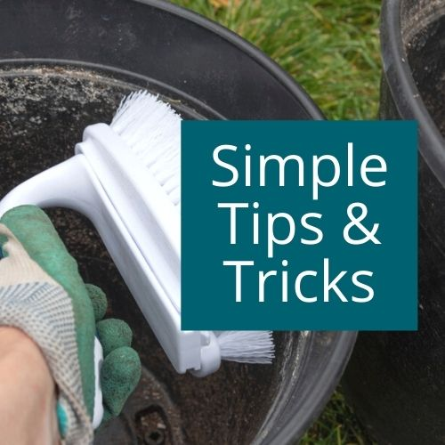Simple gardening tips and tricks for new and budding gardeners