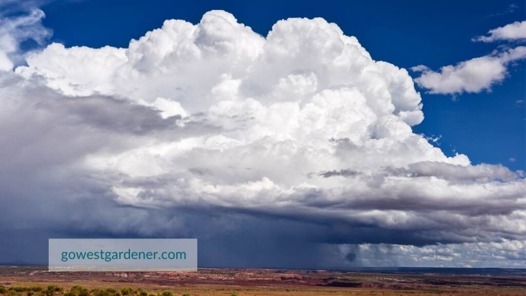 Thunderstorm clouds with hail often start out as tall, white, fluffy clouds that resemble cauliflower heads.