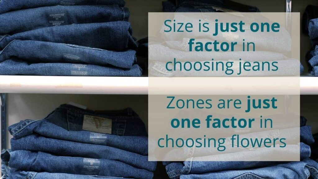 Size is one factor in choosing jeans, just like plant hardiness zones are only one factor in choosing plants