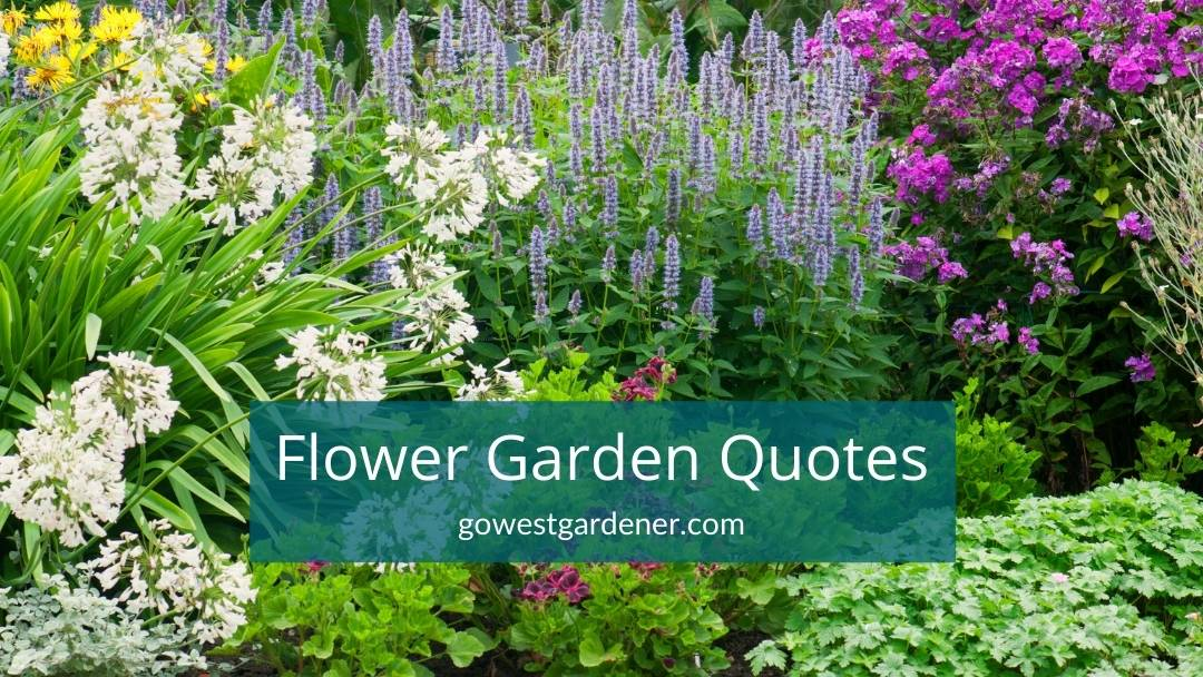 Fun and inspirational flower gardening quotes