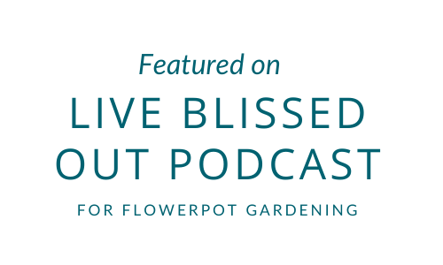 Featured on a flowerpot gardening podcast with Live Blissed Out