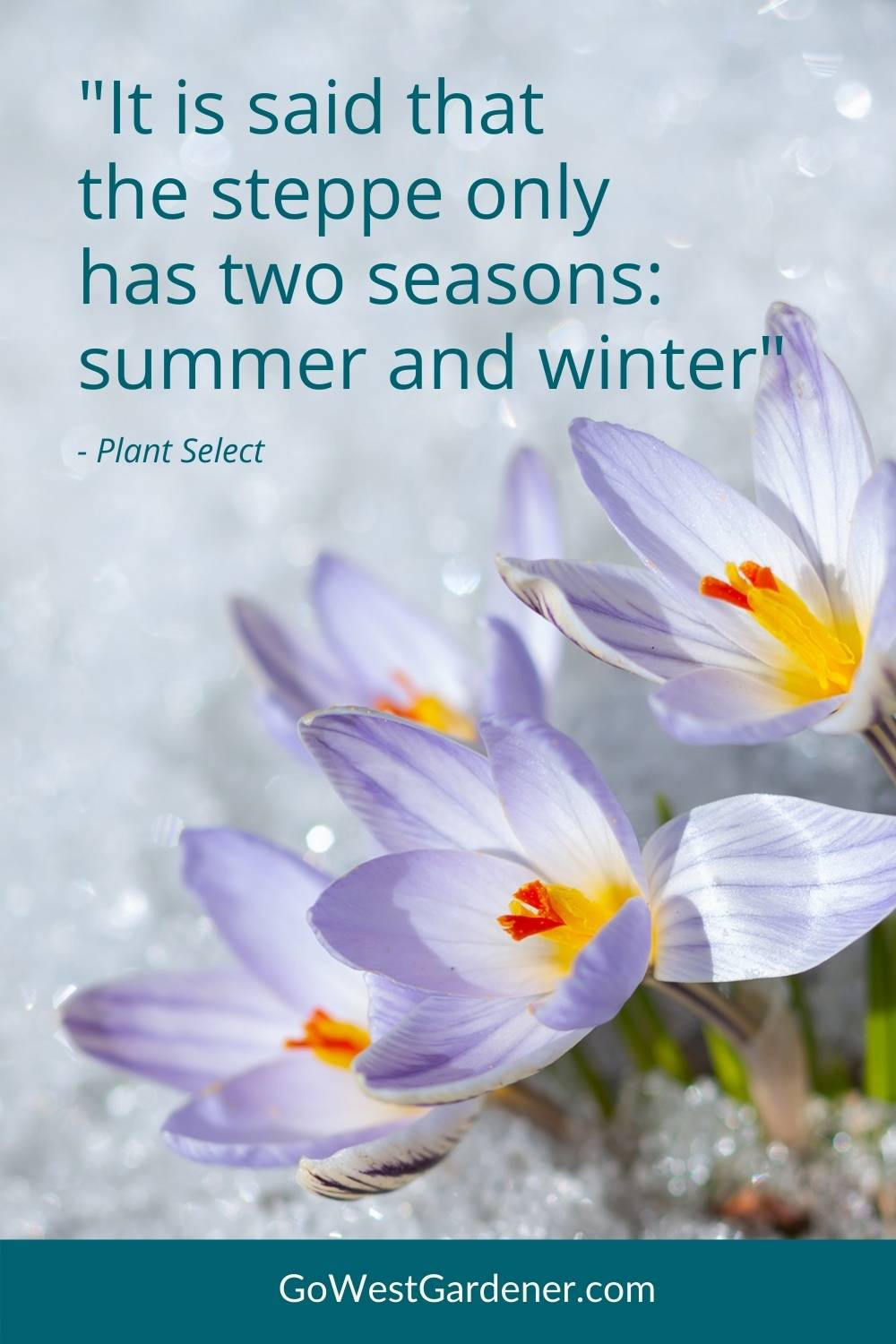 """Quotes for gardeners: """"It is said that the steppe only has two seasons: summer and winter."""" - Plant Select"""