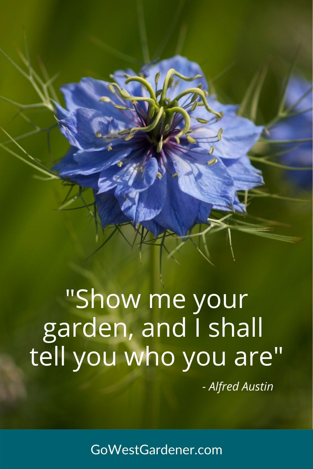 """Inspirational gardening quotes: """"Show me your garden, and I shall tell you who you are."""" -- Alfred Austin"""