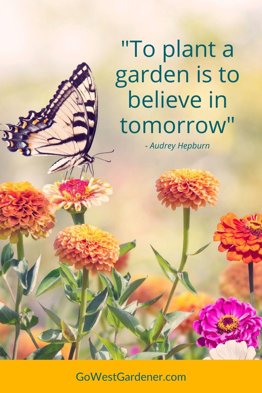 "Favorite garden quotes: ""To plant a garden is to believe in tomorrow"" - Audrey Hepburn"