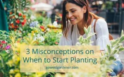 3 Misconceptions About When to Buy and Plant Flowers That Can Lead to Dead Plants (Ack!)