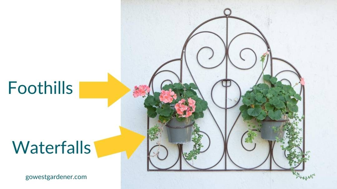 You don't need thrillers, fillers and spillers in pots. It's okay to include just two of these design ideas.