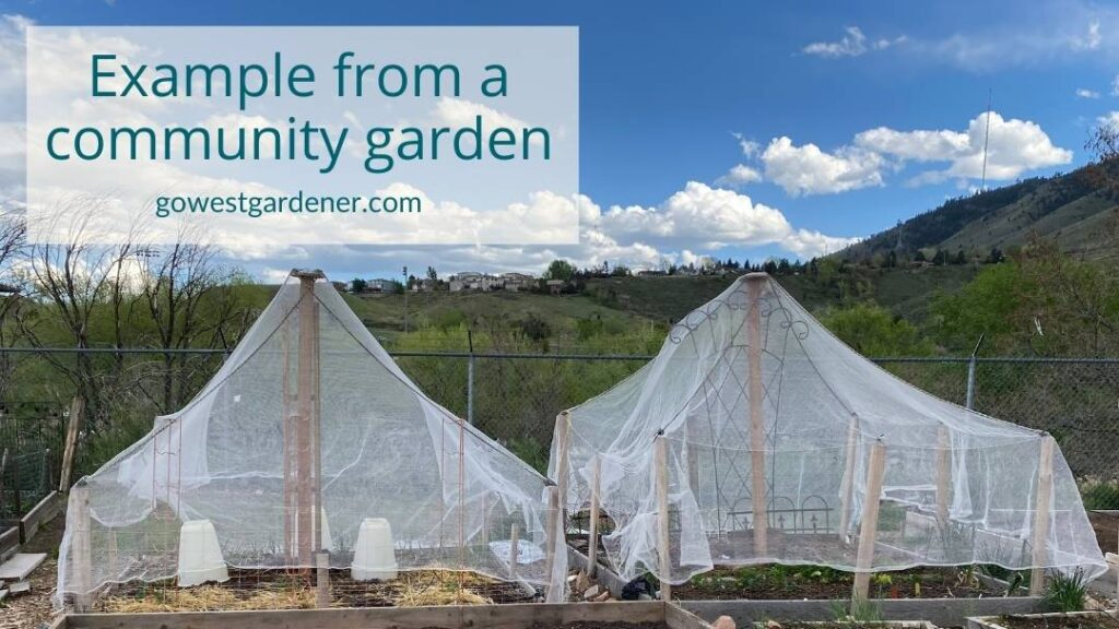 Example of hail netting over a vegetable garden and a flower garden at a community garden