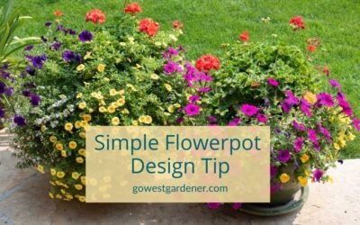 """Flowerpot Design Tip: A Simple Way to Take Your Flowers From """"Meh"""" to """"Wow!"""""""