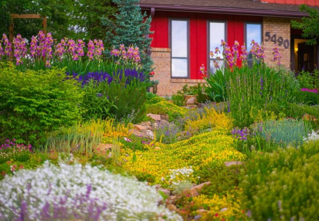 Drought-tolerant pre-planned flower garden from Resource Central