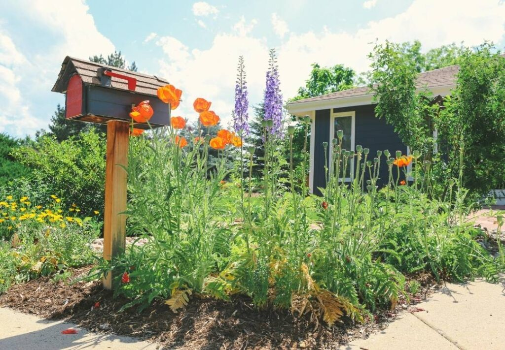 Example of a pre-planned flower garden in northern Colorado