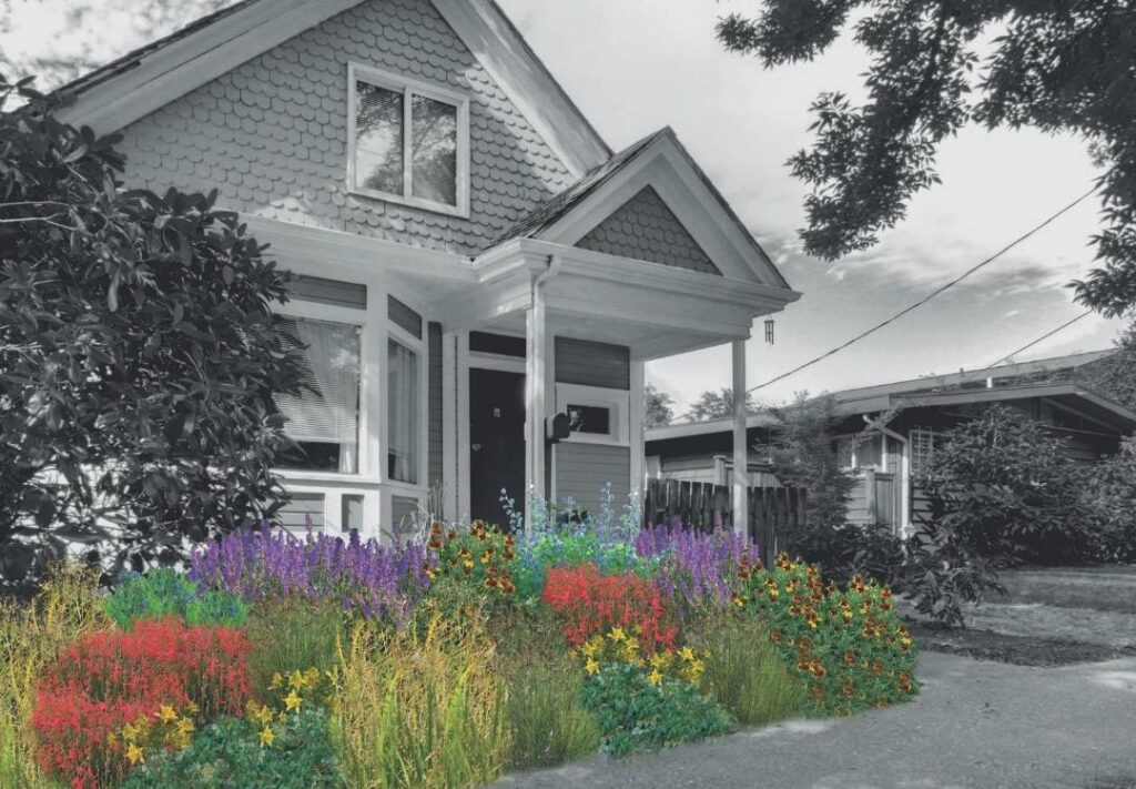 Illustration of the native Colorado Oasis flower garden -- a pre-planned flower garden for Front Range gardens