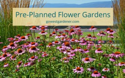 Pre-Planned Flower Gardens: Beautiful Flowers Without the Overwhelm