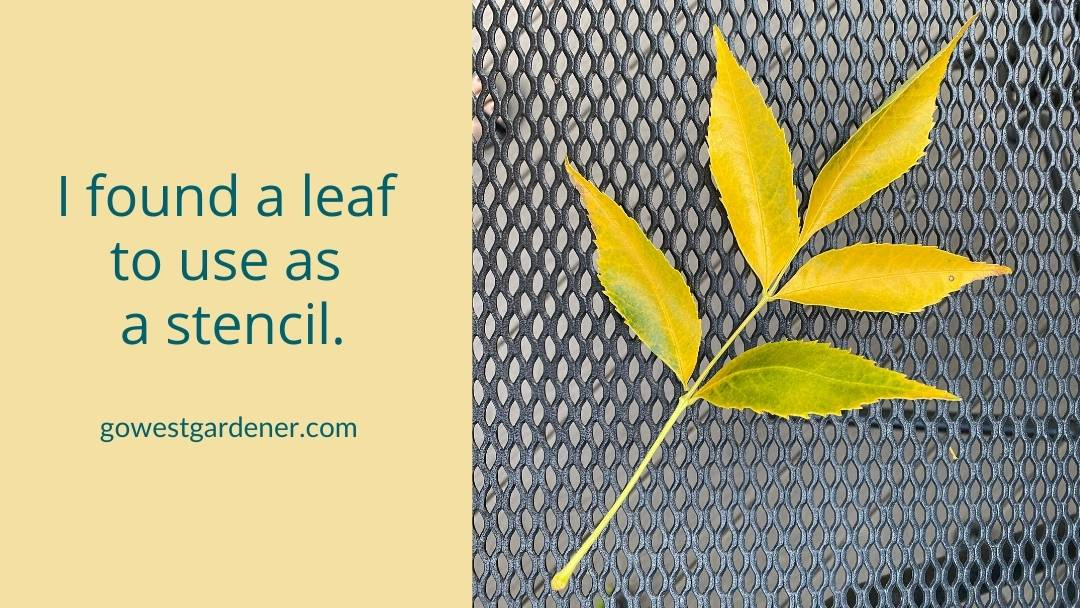 I found a leaf to use a stencil for my Jack O' Planter.