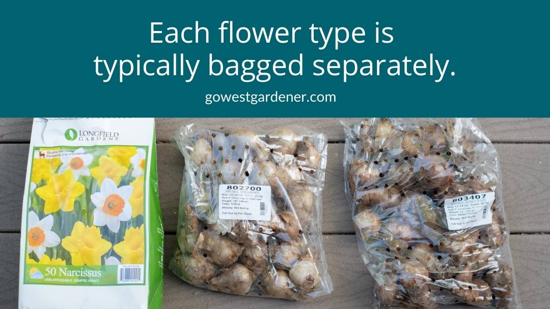 When buying a mixed package of spring flowering bulbs, each variety is typically bagged separately.